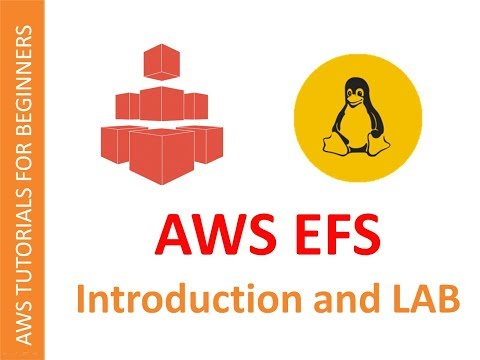 AWS Cloud | Elastic File System (EFS) | Introduction, Creation and Configuration in 20 Mins