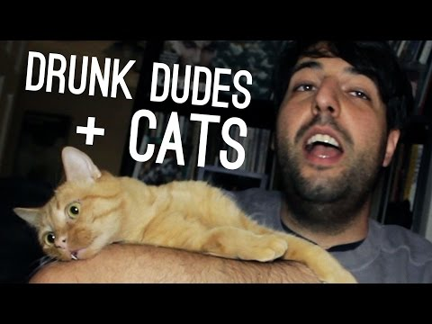 These Drunk Guys Love Their Cats