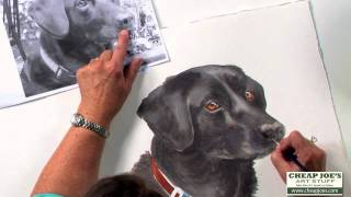 How to Paint a Dog's Face with Watercolor Artist Nancy Couick-Part 3