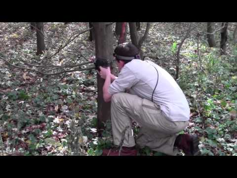Woods Laser Tag by Steradian