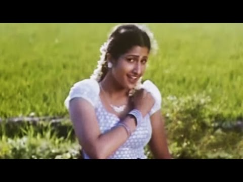 ​Full Tamil Movie song  Mayiladum Parai  Murali  Nassar  Rambha   Manu Neethi