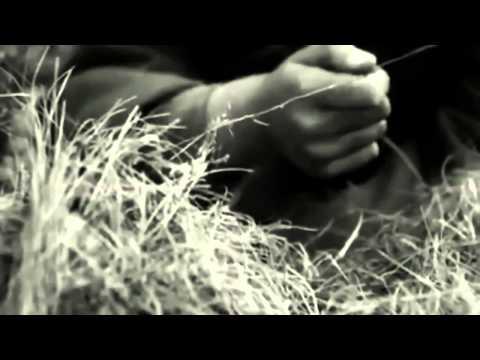 Darkwood ~ Lied Am Feuer