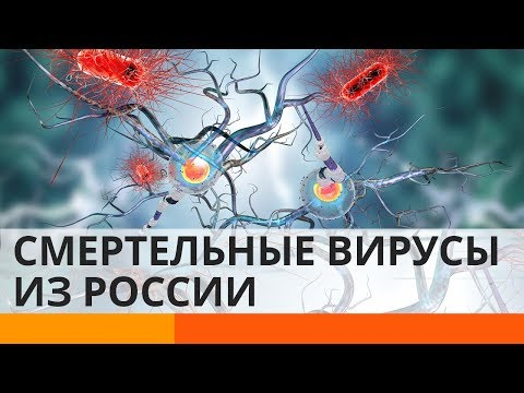 Миру угрожают смертельные вирусы из России?