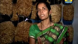 Krishidarshan 11 May 2018 - यशोगाथा मशरुम लागवड