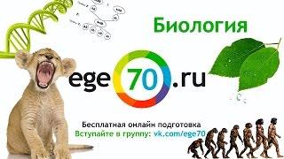 Биология. 11 класс, 2014. Подготовка к ЕГЭ по основным предметам от EGE70