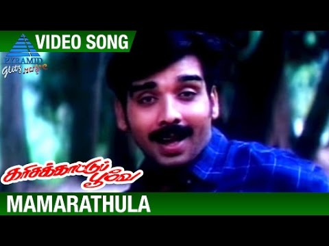 Karisakattu Poove Tamil Movie Songs | Mamarathula Video Song | Vineeth | Ravali | Ilayaraja