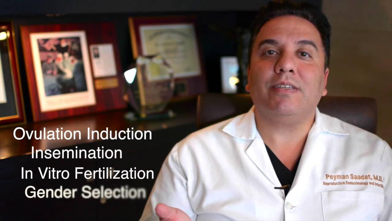 Los Angeles Reproductive Fertility Center's Dr  Peyman