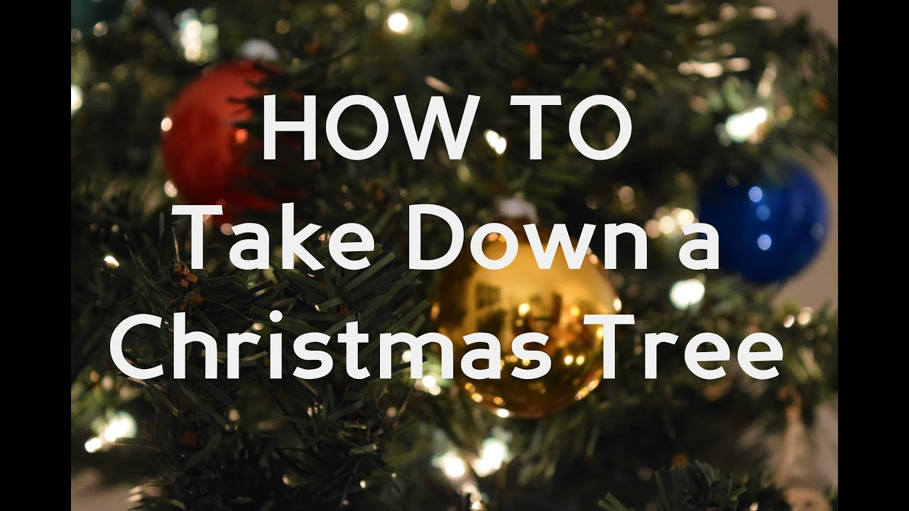 a humorous look at taking down a christmas tree - When To Take Down Christmas Tree