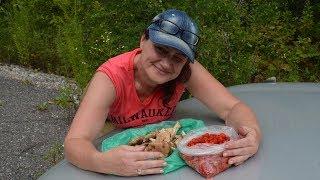 Открытие грибного сезона, дикая малина и многое другое...