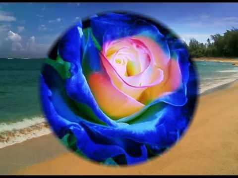 One Million Roses (A Latvian Folk Song, Instrumental)
