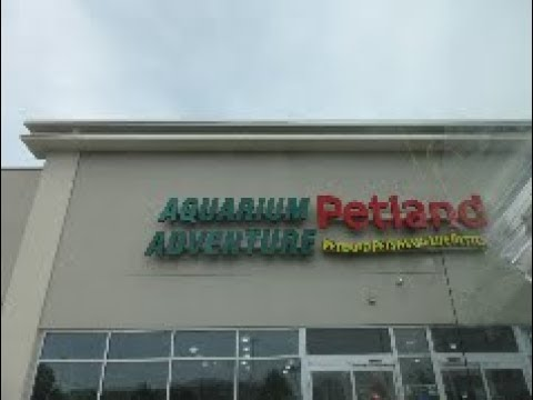 Aquarium Adventure in Bolingbrook