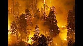 News  A terrible fire in California  All on fire