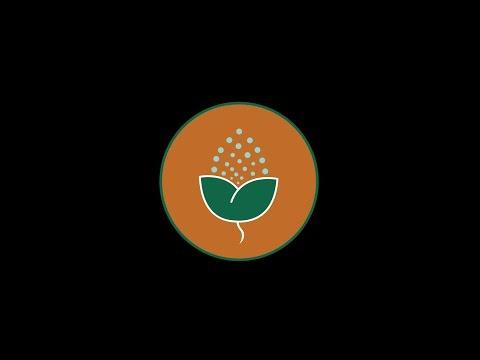 JATU PUBLIC LIMITED COMPANY