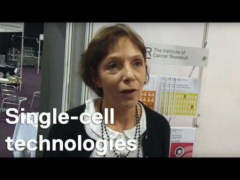 NCRI 2018: Professor Clare Isacke on single-cell technologies