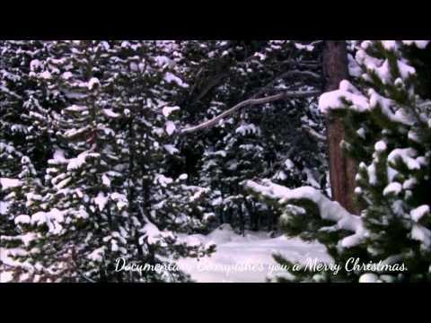 Christmas in Yellowstone Nature Documentary