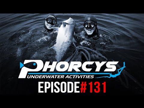 PHORCYS Spearfishing Worldwide Videos #131 - Underwater Activities 2019