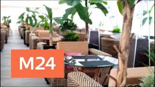 Смотреть видео Летние веранды открываются в столичных кафе и ресторанах - Москва 24 онлайн