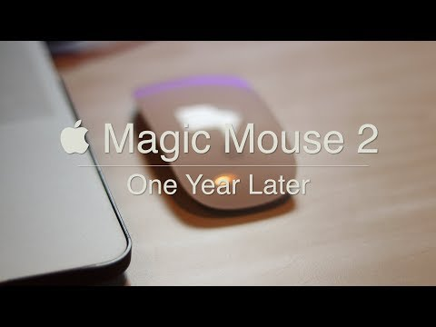 Apple Magic Mouse 2 Review - One Year Later!