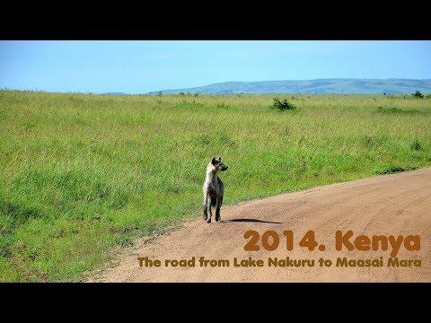 MyWay. Kenya. 2014. 04 Lake Nakuru – Maasai Mara
