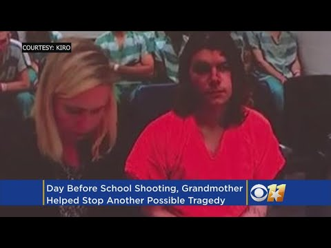 Grandmother Stops Another School Shooting Day Before Florida Massacre