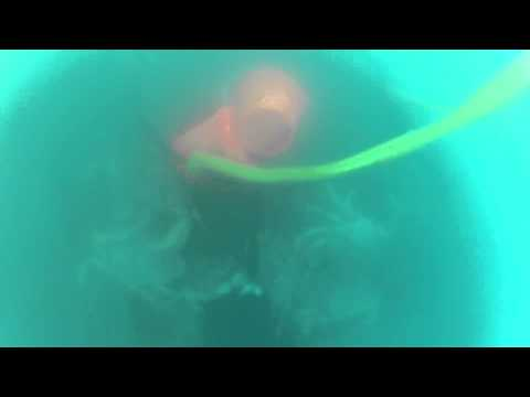 Underwater Dungeness Crab fishing - what happens underwater