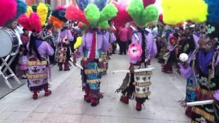 Romita Guanajuato 2011 (Danza del Violin...
