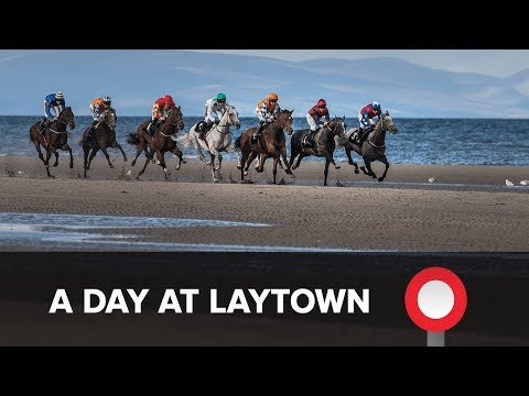 A Day at Laytown Races