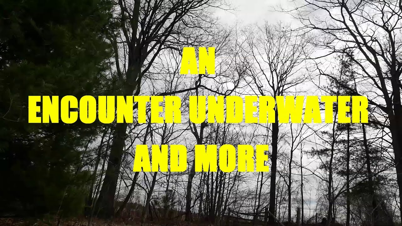 """""""An Encounter Underwater and More"""" 