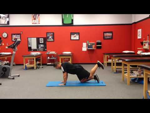 Quadruped hip extension