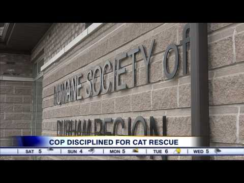 Video: Durham cop faces discipline after removing cat from home of woman on drug binge