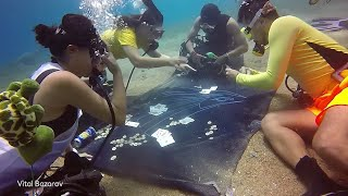 connectYoutube - Divers Decide To Play Some Underwater Poker