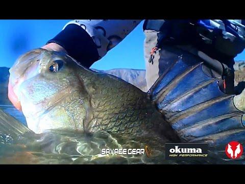 Carolina Rig For Perch Fishing