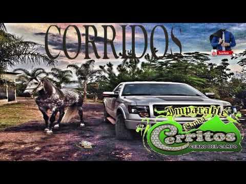 2018 !! Banda Cerritos  - Corridos Perrones