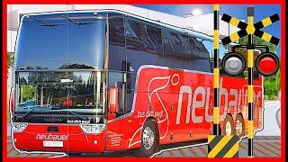 【バスと踏切④】★バス Bus 大集合★  / Various buses  / Railroad Crossing Anime for Kids/幼児向け
