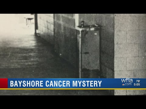 State officials to begin collecting health data to study Bayshore High School 'cancer cluster'