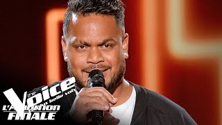 Florent Pagny (Terre) | Ritchy | The Voice France 2018 | Auditions Finales