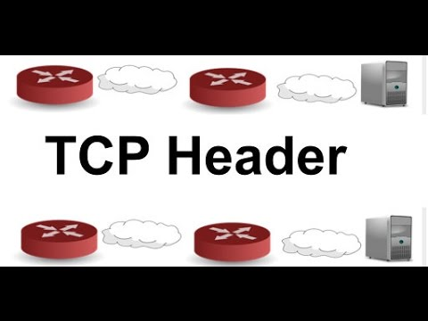 TCP Header: Networking & TCP/IP Tutorial. Another GeekyVid