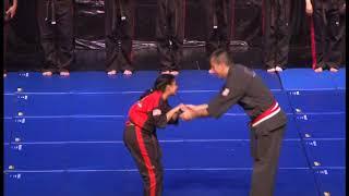 Gabrieles Martial Arts Black Belt Show 2017 Part 4