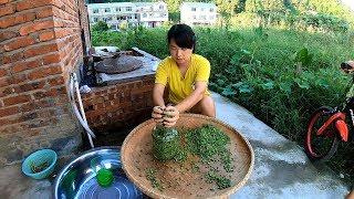 秋子教妳腌制侗家特色酸豆角,原汁原味簡單的做法,妳學會了嗎