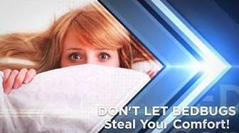 Bedbug Removal Boca Raton FL | Boca Raton FL Bed Bug Removal | Bedbug Pest Control Boca Raton FL