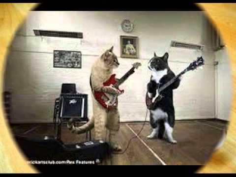 Malu Sama Kucing Romaria Dj Dugem 2015