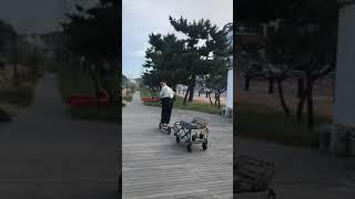 샤오미 전동킥보드 주행영상 샤오미 M365 주행영상 I…