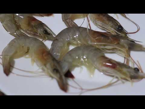 How to clean prawns quickly | Clean Seafood | CookeryShow