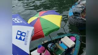 Publication Date: 2019-07-26 | Video Title: 西貢篇: 介紹香港西貢碼頭到橋咀島的小旅行