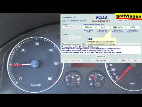VW Golf 5, 1.9TDI EGR Basic Settings VCDS Test /I Do Not Know What To Do/