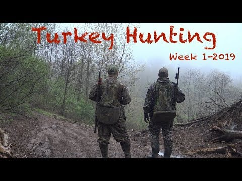 Connecticut Turkey Hunting-Week 1 2019
