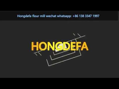 european-client-visit-our-hongdefa-maize-flour-milling-machine-factory