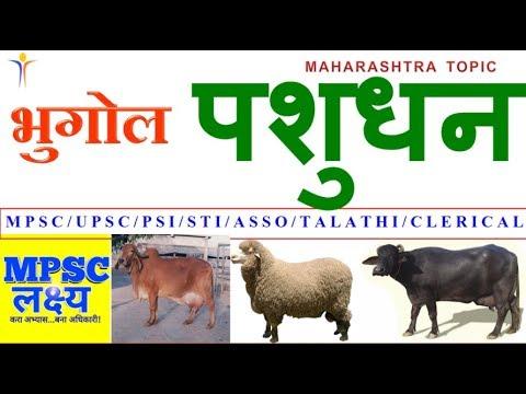 भुगोल - पशुधन Geography Animal Husbandry ||MPSC PSI STI ASST TALATHI AGRICULTURE Exams||
