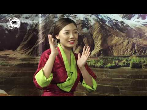 ༢༠༡༧ ལོའི་བོད་ཀྱི་མཛངས་མ་བསྟན་འཛིན་དཔལ་སྒྲོན།  An Interview With Miss Tibet 2017: Tenzin Paldon