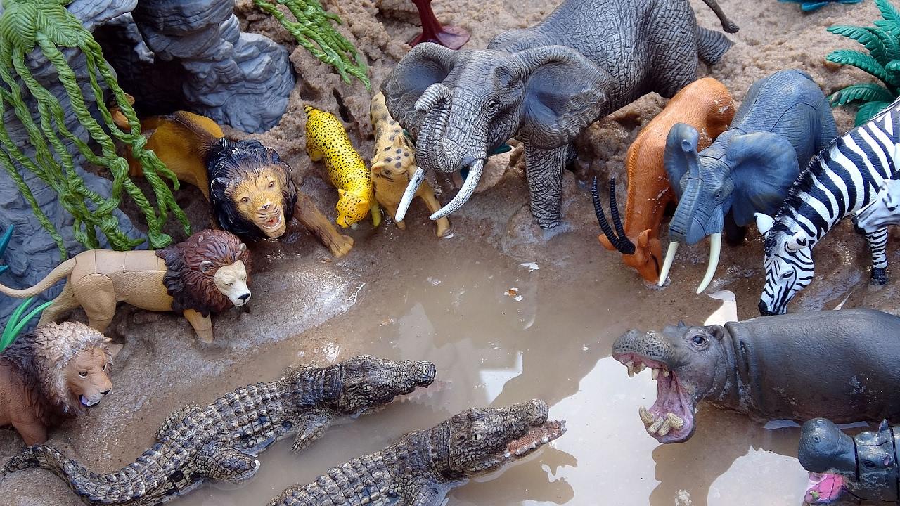 Wild Animal Games For Kids